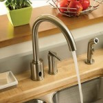 Danze Parma Hands Free Kitchen Faucet