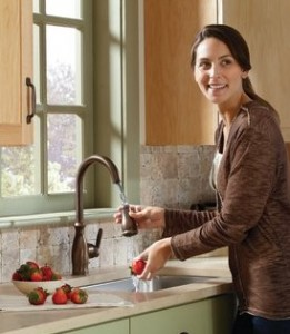 Moen Brantford Pull Down Kitchen Faucet With Reflex Technology